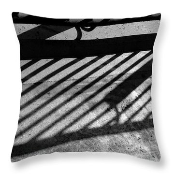Throw Pillow featuring the photograph Don't Fence Me In by Luc Van de Steeg