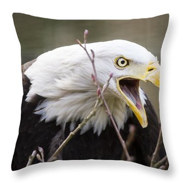 Don't Mess With This One Throw Pillow
