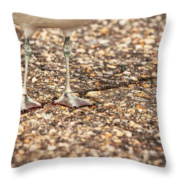 Don't Step On The Crack Throw Pillow by Karol Livote