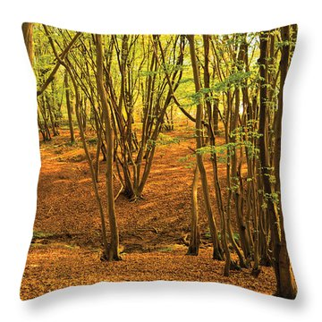 Donyland Woods Throw Pillow by David Davies