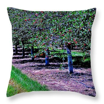 Door County Bounty Throw Pillow