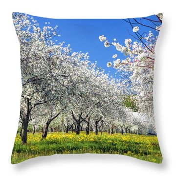 Door County Cherry Blossoms Throw Pillow