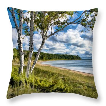 Door County Europe Bay Birch Throw Pillow by Christopher Arndt