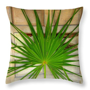 Door Decor Belize Style Throw Pillow