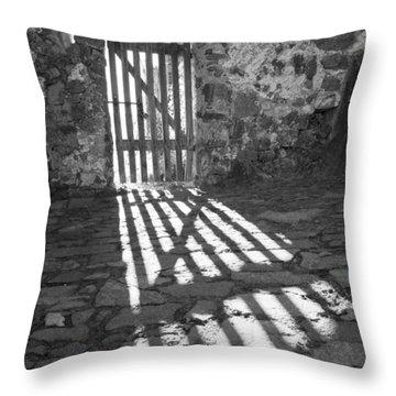 Door In The Sun Throw Pillow