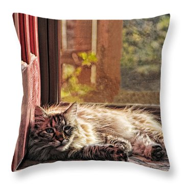 Doorstop Throw Pillow by Karen Slagle