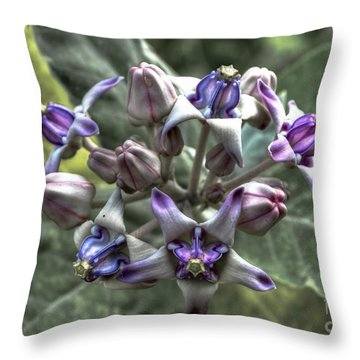 Throw Pillow featuring the photograph Dork Rak by Michelle Meenawong