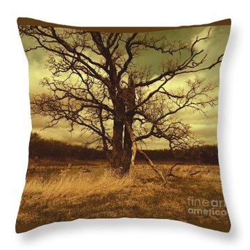Dormant Beauty Throw Pillow