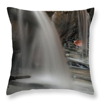 Double Cascade Throw Pillow by Darleen Stry