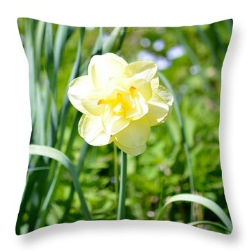 Double Charm Throw Pillow by Sonali Gangane