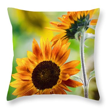 Double Dose Of Sunshine Throw Pillow by Jordan Blackstone