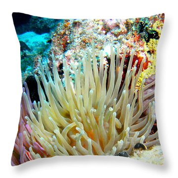 Throw Pillow featuring the photograph Double Giant Anemone And Arrow Crab by Amy McDaniel