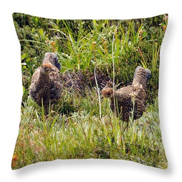 Throw Pillow featuring the photograph Double Grouse by Rebecca Parker