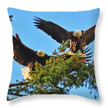 Double Landing Throw Pillow by Jack Moskovita
