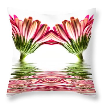 Double Pink Gerbera Flood Throw Pillow by Steve Purnell