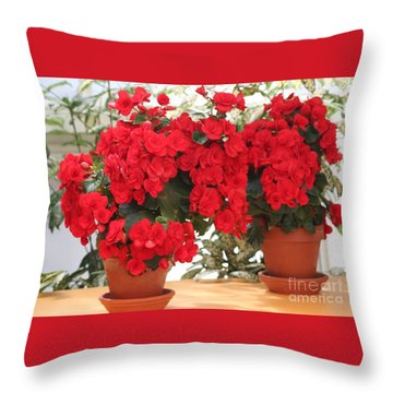 Throw Pillow featuring the photograph Double Red Begonias by Mary Lou Chmura