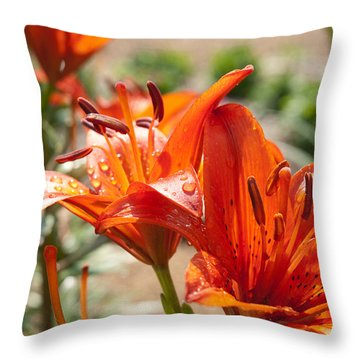 Double Reds Throw Pillow by Lena Wilhite