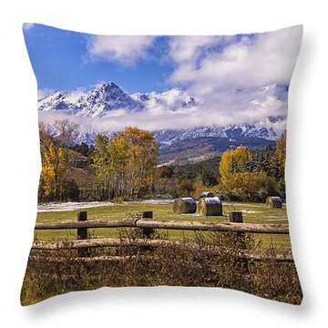 Double Rl Ranch Throw Pillow by Priscilla Burgers