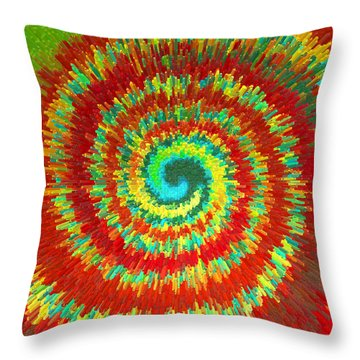 Throw Pillow featuring the painting Double Spiral  C2014 by Paul Ashby