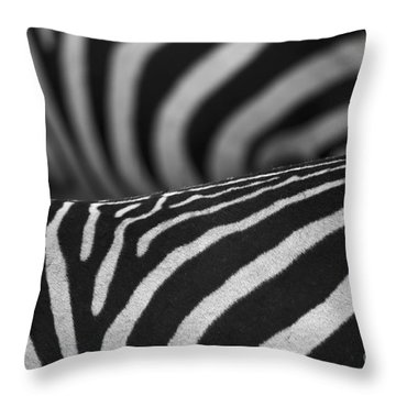 Double Vision... Throw Pillow