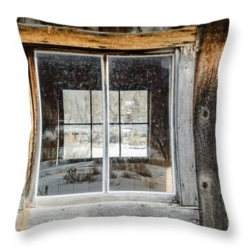 Doubling Up Throw Pillow by Sue Smith