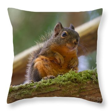 Douglas Squirrel Throw Pillow