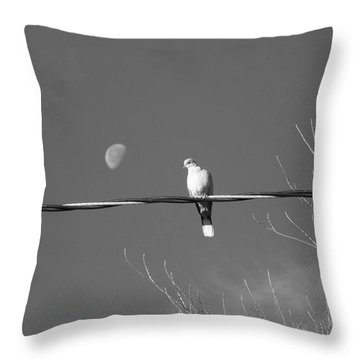 Dove And Moon Throw Pillow by Deborah Moen