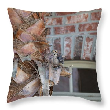 Dove Nest 2 Throw Pillow