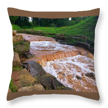Throw Pillow featuring the photograph Down A Creek by Chris Tarpening