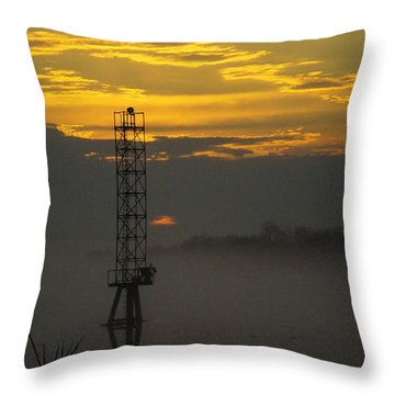 Throw Pillow featuring the photograph Down By The River by Robyn King
