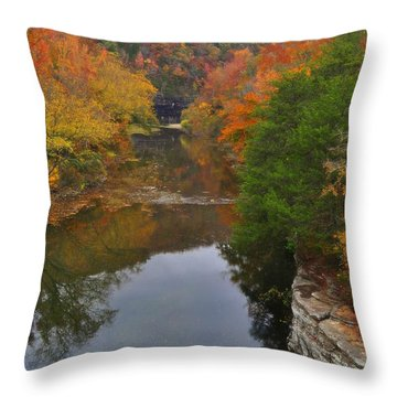 Down From Ponca Throw Pillow by Marty Koch