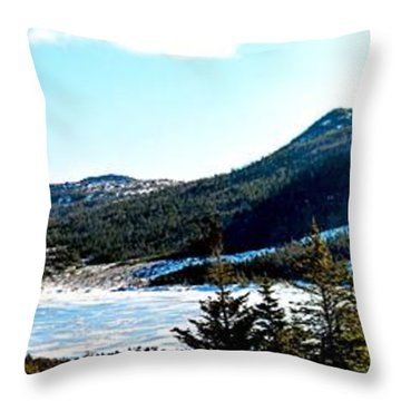 Down In The Valley Triptych Throw Pillow by Barbara Griffin