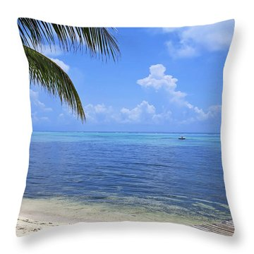Down Island Throw Pillow