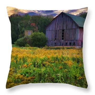 Down On The Farm II Throw Pillow by John Crothers