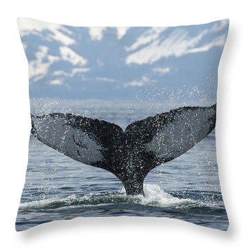 Down Throw Pillow by Ted Raynor