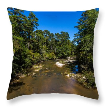 Down The Bayou Throw Pillow