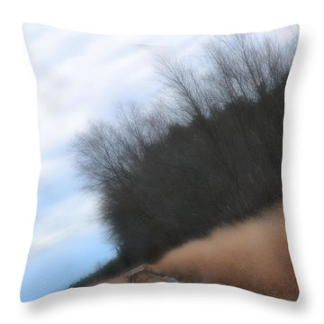 Throw Pillow featuring the photograph Down The Dirt Road by Beth Sawickie