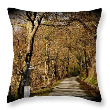 Throw Pillow featuring the photograph Down There by Christopher Rowlands