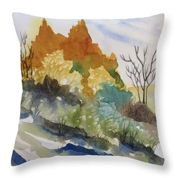 Downhill Slide Throw Pillow by Barbara Tibbets