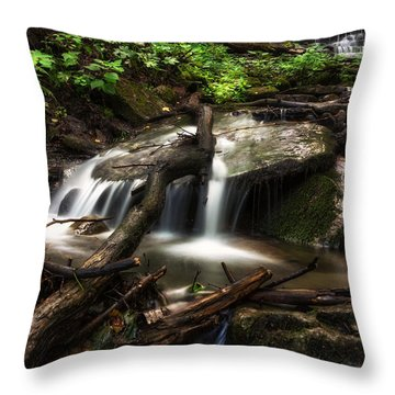 Downstream Throw Pillow by Mark Papke