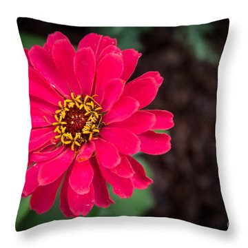 Downtown Bloom Throw Pillow