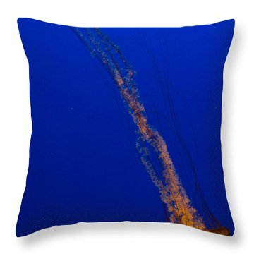 Downward Facing Pacific Sea Nettle 1 Throw Pillow