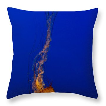 Downward Facing Pacific Sea Nettle 3 Throw Pillow