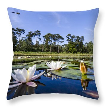 Downy Emerald Dragonfly Flying Over Lake Throw Pillow