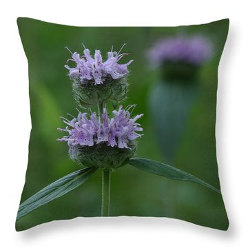 Downy Wood Mint Throw Pillow