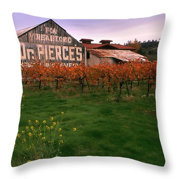 Dr Pierce's Barn Billboard Throw Pillow by Jerry McElroy