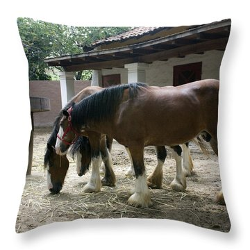 Throw Pillow featuring the photograph Draft Horses by Lynn Palmer