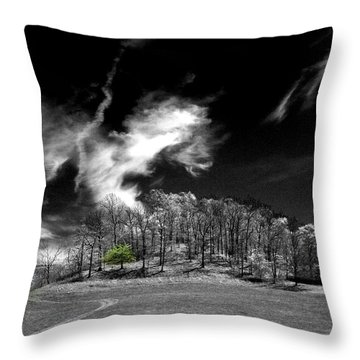 Dragon Cloud Throw Pillow