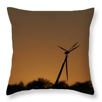 Dragon Fly Silhouette Throw Pillow