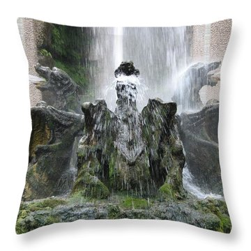 Dragon Fountain Throw Pillow